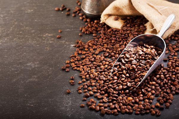 コーヒー「タリーズ コーヒースクール」