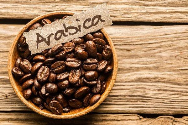 コーヒー「コーヒー豆の種類と特徴」